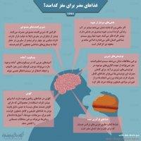 غذاهای مضر برای مغز کدامند؟