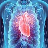 بازسازی دریچه سهلتی قلب بدون استفاده از پمپ سلامت نیوز: بازسازی دریچه سهلتی قلب بدون استفاده از پمپ
