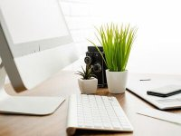 غلبه بر استرس شغلی به کمک گیاهان آپارتمانی