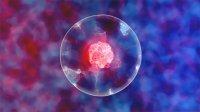 پایداری سلولهای زنده تا دو هفته با استفاده از نانو ذرات