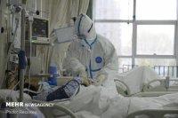تلفات «کرونا» به ۸۰ نفر رسید