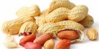 نخستین داروی ضد آلرژی بادام زمینی تأیید شد