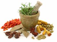 16 گیاهی که خاصیت آنتی هیستامین دارد