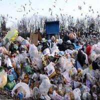 تولید زباله در پایتخت نگرانکننده شد سلامت نیوز: تولید زباله در پایتخت نگرانکننده شد