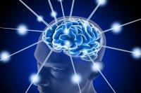 تحصیلات در بهبود حافظه سالمندان تاثیر گذار است