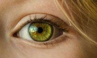 آیا حس بینایی و لامسه با هم مرتبط هستند؟