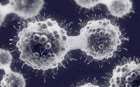 ابداع روشی برای بهبود سرطان بدون شیمیدرمانی