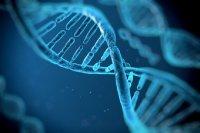 ژنها چه نقشی در تأثیرگذاری داروهای کرونا بازی می کنند