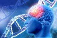 درمان آلزایمر پیشرفته با ژندرمانی برای اولین بار در جهان