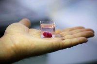 تولید سلولهای قلب با فناوری چاپ سهبعدی