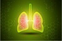 کشف یک پروتئین جدید در ریه برای درمان آسم
