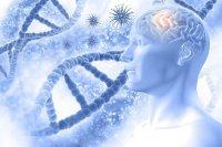 تاثیر طولانی مدت مصرف دارو در تسریع زوال عقل سالمندان