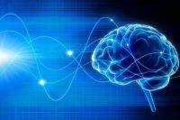 ترمیم مغز بیماران مبتلا به پارکینسون با کمک سلولهای بنیادی