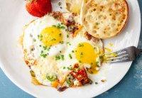 تخم مرغ در آینه طب سنتی