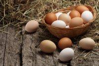 5  نکته در مورد تخم مرغ که خوب است بدانید