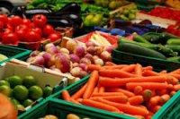راهاندازی آزمایشگاه تشخیص محصولات تراریخته در موسسه صنایع غذایی