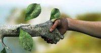 طرح تشکیل وزارتخانه محیط زیست