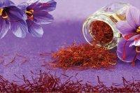 تولید قرص زعفران برای مهار سلولهای سرطانی