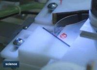 پیشرفت در چاپگر بیولوژیکی سه بعدی و امکان ساختن اندام های انسان