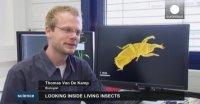 الگوبرداری از حرکت حشرات در نوآوری های صنعتی