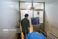 وقوع سالانه 8 هزار مرگ مغزی در ایران
