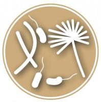 گونه های میکروبی